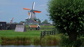 Idyllic view over the typical windmills in Holland stock video