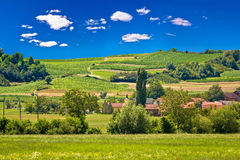 Idyllic village in pure green nature Royalty Free Stock Images