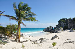 Idyllic White Sand Beach on the Sea Royalty Free Stock Photography