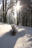 Idyllic winter Royalty Free Stock Image
