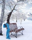 Idyllic  Winter Background Royalty Free Stock Image
