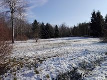 Idyllic landscape in winter Royalty Free Stock Photos
