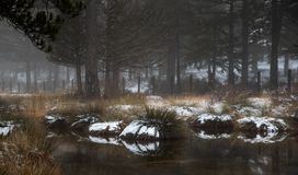 Idyllic Winter landscape with a frozen lake a at Troodos Mountains, Cyprus stock photo