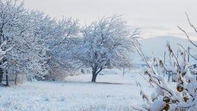 Idyllic Winter Scene stock photos