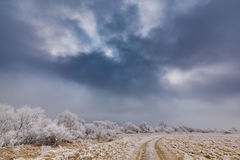 Idyllic winter scenery with trees covered by frost, along frozen river Stock Photo