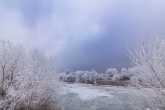 Idyllic winter scenery with trees covered by frost, along frozen river Royalty Free Stock Image