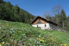 Idyllic wooden hut with fresh green gras Royalty Free Stock Photo