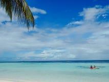 Idylliczna biel plaża z drzewkami palmowymi i ludźmi kayaking zdjęcie stock
