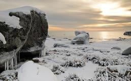 idylliczna krajobrazowa denna zima Zdjęcia Stock