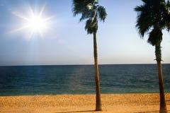 Idylliczna nadmorski lokacja w tropikalnym lub podzwrotnikowym kraju zdjęcia royalty free