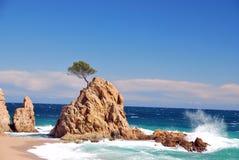 Idylliczna plaża Fotografia Stock
