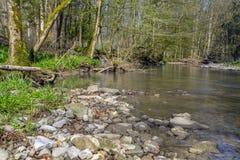 Idylliczna rzeka przy wiosna czasem Zdjęcia Stock