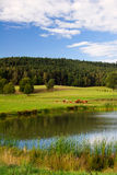 idylliczna woda Zdjęcie Royalty Free