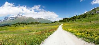 Idylliczny góra krajobraz w lecie z żwir drogą na dalej w prawo stronie fotografia stock
