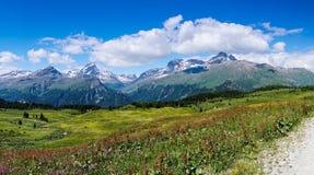 Idylliczny góra krajobraz w lecie z żwir drogą na dalej w prawo stronie zdjęcia royalty free