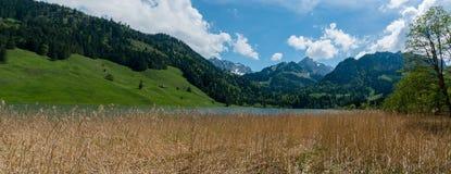 Idylliczny góra krajobraz w Szwajcarskich Alps z jeziorem i złota bagno trawa w przedpolu obraz royalty free