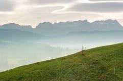 Idylliczny i pokojowy góra krajobraz z drewnianym ogrodzeniem na trawiastym zboczu i wielki widok Szwajcarscy Alps za zdjęcie stock