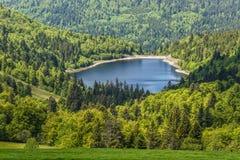 Idylliczny Jeziora Le Lac De losu angeles lande otaczający zielonym lasem, krajobraz w francuzie Alsace na trasie Crete, Francja, fotografia stock