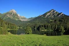 Idylliczny jeziorny Obersee Brunnelistock i Mt zdjęcia royalty free
