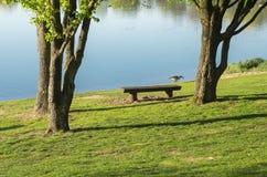 Idylliczny jezioro z rekreacyjnymi udostępnieniami i rekreacyjnym terenem w wiośnie z Kanada gąską na brzeg obraz royalty free