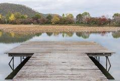Idylliczny krajobraz Japonia obrazy stock