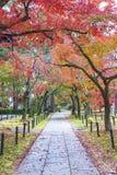 Idylliczny krajobraz Kyoto, Japonia zdjęcie stock