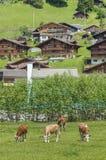 Idylliczny krajobraz szwajcar fotografia stock