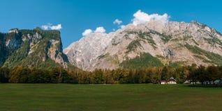 Idylliczny krajobraz w Alps z świeżymi zielonymi łąkami, kwitnienie kwiatami i snowcapped halnymi wierzchołkami w obrazy royalty free
