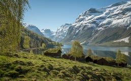 Idylliczny krajobraz w Norwegia fotografia royalty free
