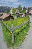 Idylliczny krajobraz w Szwajcaria obraz stock