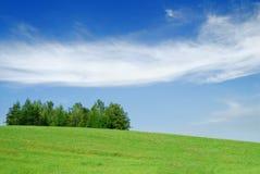 Idylliczny krajobraz, widok zieleni pola i niebieskie niebo, obrazy stock