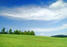 Idylliczny krajobraz, widok zieleni pola i niebieskie niebo, obrazy royalty free