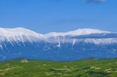 Idylliczny krajobraz z świeżymi zielonymi łąkami i snowcapped halnymi wierzchołkami Obraz Stock