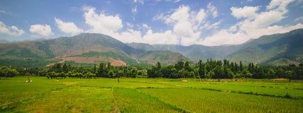 idylliczny krajobrazu obrazy stock