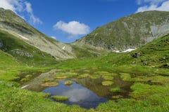 Idylliczny lato krajobraz z halnym jeziorem z spławową zielenią obraz stock