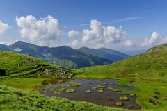 Idylliczny lato krajobraz z halnym jeziorem z spławowymi zielonej trawy wyspami obrazy royalty free