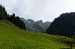 Idylliczny lato krajobraz z wycieczkować ślad w Alps z pięknymi świeżymi zielonymi halnymi paśnikami, Allgäu Niemcy zdjęcie royalty free