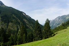 Idylliczny lato krajobraz z wycieczkować ślad w Alps z pięknymi świeżymi zielonymi halnymi paśnikami, Allgäu Niemcy zdjęcia royalty free