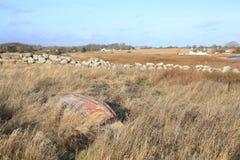 Idylliczny nadmorski na Funen wyspie, Dani obraz stock