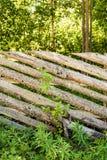 Idylliczny naturalny ogrodzenie z wieśniakiem, wietrzejący drewno zaszaluje lato w wsi Obraz Stock