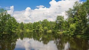Idylliczny naturalny piękno z jeziora i zieleni drzewami w lecie fotografia stock