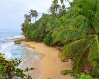Idylliczny plażowy Manzanillo Costa Rica obrazy stock