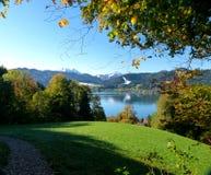 Idylliczny południowy niemiec krajobraz z jesieni drzewami w przedpolu śnieg i jezioro zakrywał góry w tle zdjęcia royalty free
