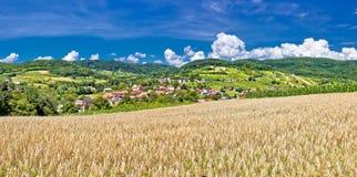Idylliczny rolniczy krajobraz Kalnik góra obrazy royalty free
