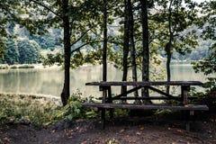 Idylliczny widok Cudowny jezioro, Otaczający lasem obraz royalty free