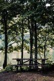 Idylliczny widok Cudowny jezioro, Otaczający lasem zdjęcia royalty free
