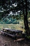Idylliczny widok Cudowny jezioro, Otaczający lasem zdjęcie stock