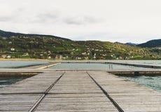 Idylliczny widok drewniany molo w jeziorze z halnym scenerii t?em Plav jezioro Montenegro zdjęcia royalty free