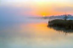 Idylliczny widok ranek mgła nad Jeziornym i powstającym słońcem Obrazy Royalty Free
