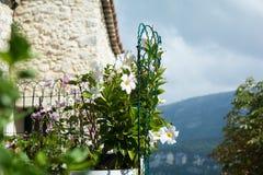 Idylliczny widok stare grodzkie ulicy w Francuskim Riviera obraz stock